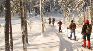 A group of people navigating down a snowy hill on skis